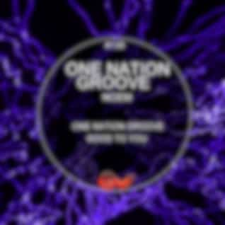 One Nation Groove (Original Mix)