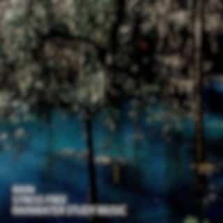 Rain: Stress Free Rainwater Study Music