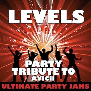Levels (Party Tribute to Avicii)