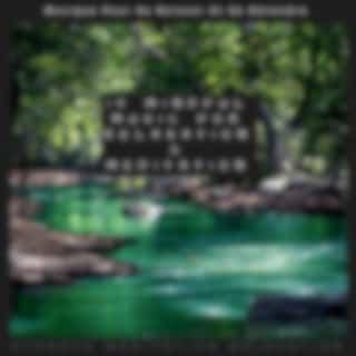 15 Mindful Music for Relaxation & Meditation (Musique Pour Se Relaxer Et Se Détendre)