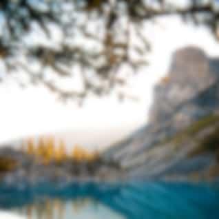 40 Calming Nature Recordings for Zen Spa