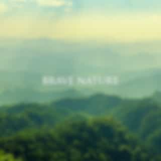 Brave Nature (Listen to Nature, Opening the Mind, Beautiful Sounds of Forest, Birds, Waves)