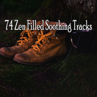 74 Zen Filled Soothing Tracks