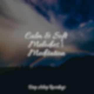 Calm & Soft Melodies   Meditation