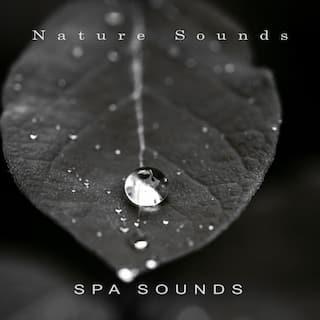 Spa Sounds