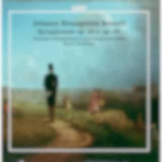 Brandl: Symphonies, Opp. 25 & 12