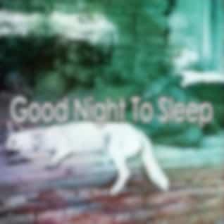 Good Night To Sleep