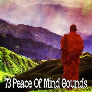 73 Peace of Mind Sounds