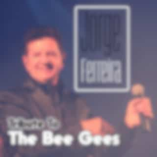 Jorge Ferreira Tribute to the Bee Gees (Radio Edit)