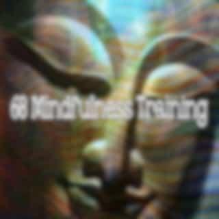 68 Mindfulness Training