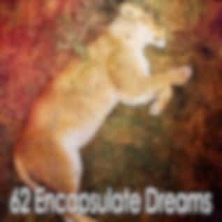 62 Encapsulate Dreams