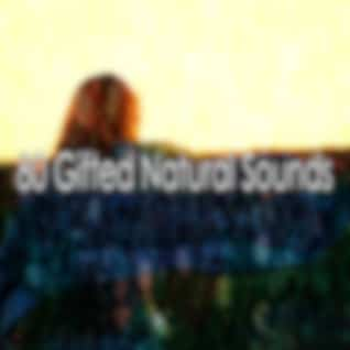 80 Gifted Natural Sounds