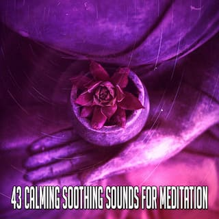 43 Calming Soothing Sounds for Meditation