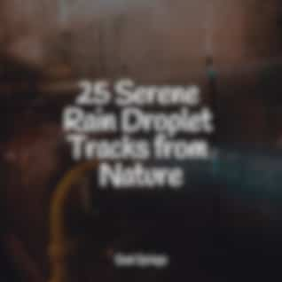 25 Serene Rain Droplet Tracks from Nature