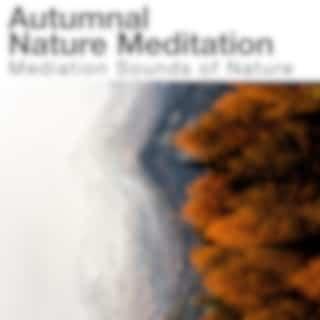 Autumnal Nature Meditation