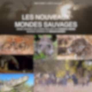 Les nouveaux mondes sauvages (Bande originale de la série télévisée)