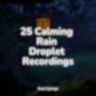 25 Calming Rain Droplet Recordings