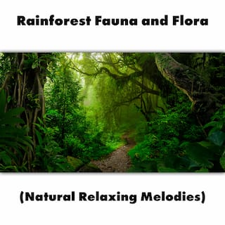 Rainforest Fauna and Flora (Natural Relaxing Melodies)