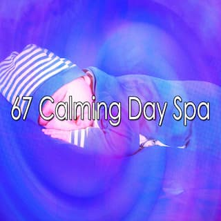 67 Calming Day Spa