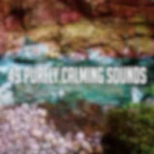 49 Purely Calming Sounds
