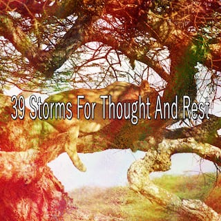 39 Storms for Thought and Rest
