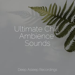 Ultimate Chill Ambience Sounds