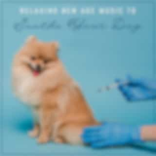 Relaxing New Age Music to Soothe Your Dog - Calm Your Dog Before Vaccination