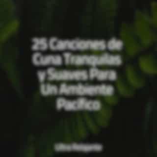 25 Canciones de Cuna Tranquilas y Suaves Para Un Ambiente Pacífico