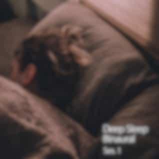 Deep Sleep Binaural Ses. 1