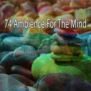 74 Ambience for the Mind