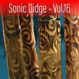 Sonic Didge, Vol. 16