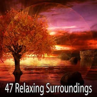 47 Relaxing Surroundings