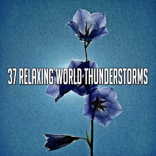 37 Relaxing World Thunderstorms
