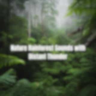 Nature Rainforest Sounds with Distant Thunder