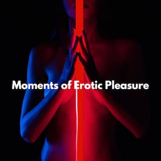 Moments of Erotic Pleasure (Sexy Chill Out Music)