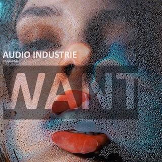 Want (Original Mix)