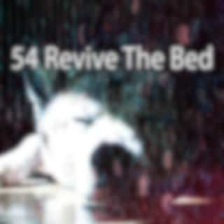 54 Revive The Bed