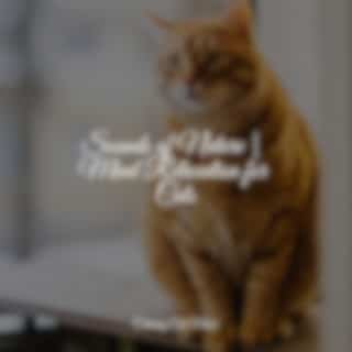 Sounds of Nature | Mind Relaxation for Cats