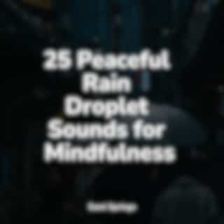 25 Peaceful Rain Droplet Sounds for Mindfulness