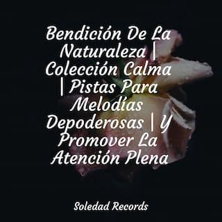 Bendición De La Naturaleza | Colección Calma | Pistas Para Melodías Depoderosas | Y Promover La Atención Plena