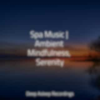Spa Music | Ambient Mindfulness, Serenity