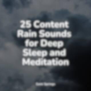 25 Content Rain Sounds for Deep Sleep and Meditation