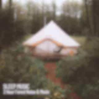 Sleep Music: 2 Hour Forest Noise & Music