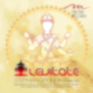 Levitate feat. Mark Tee