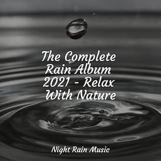 The Complete Rain Album 2021 - Relax With Nature