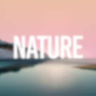 Nature (Original Mix)