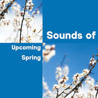 Sounds of Upcoming Spring – Collection of Beautiful and Mesmerizing Mother Nature Melodies