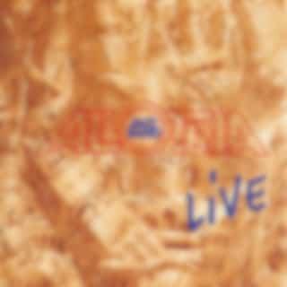 Allotria Live