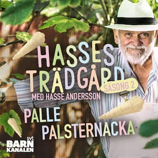 Palle palsternacka