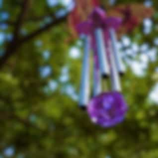 Wind Chime in Nature: Evening with Birds & Crickets